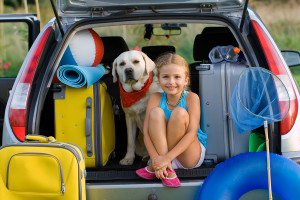 Image result for vacation driving